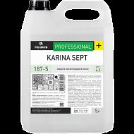 Жидкое бактерицидное мыло - Pro-Brite Karina Sept 5л